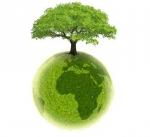 ecologie3.JPG