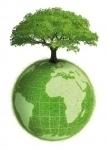 Agora Ecologie.jpg